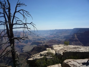 215 USA Grand Canyon