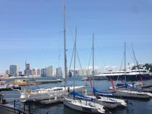 Hudson River e New Jersey sullo sfondo