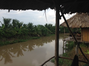Can Tho, Delta del Mekong