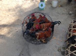 Mercato di Mai Chau